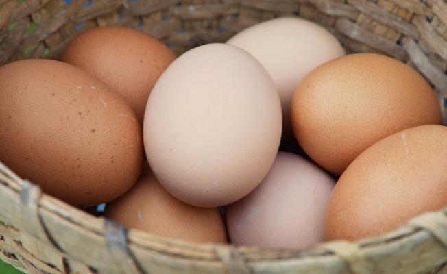 Almanya'da et tüketimi geriledi, yumurta sıkıntısı yaşanıyor