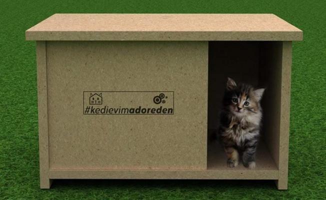 Atıl malzemeler kedilere ev oldu