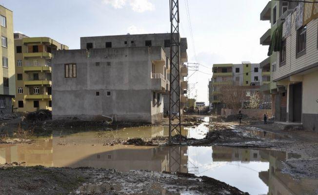 Diyarbakır Yenişehir'de salgın hastalık tehlikesi