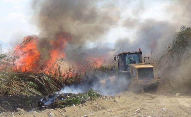 Kuşların göç noktası Dalyaz Sazlığı'nda yangın