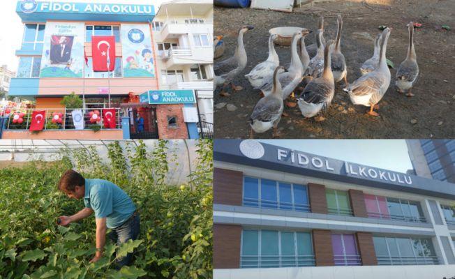 Finlandiya eğitim sistemi Fidol Okulları ile Türkiye'de