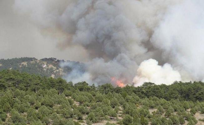 Domaniç'teki yangın büyüyor: 7 ev boşaltıldı