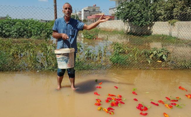 Şanlıurfa Suruç'ta ev ve iş yerleri sular altında kaldı
