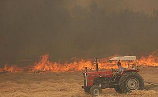 100 hektarlık alan zarar gördü