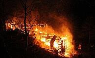 Zonguldak Ereğli'de at çiftliği yandı