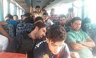 45 kişilik otobüsten 96 mülteci çıktı