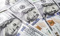 ABD'nin vize yasağı sonrası dolar yükselmeye devam edecek mi?