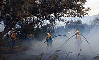 ABD'de orman yangınları'nda 10 kişi öldü