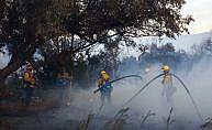 Kaliforniya'daki yangınlarda ölü sayısı artıyor