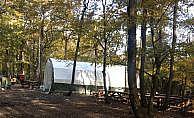 Belgrad Ormanı'nda kumar çadırı kurmuşlar